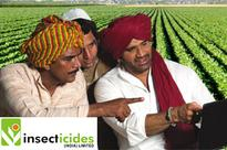 Insecticides (India) gains 3%