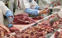 US E. coli outbreak blamed on Australian beef