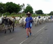 Femi Fani-Kayode: The Fulani Republic of Nigeria (Part 2)