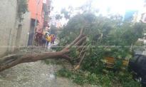 Cyclone Vardah: Kerala monitoring situation in TN