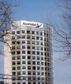 Akzo Nobel rejects $22 billion PPG bid, looks to spin off chemicals