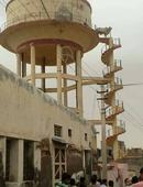 Crazy Brahma Bull in India climbs a spiral staircase to the top of a water tank tower