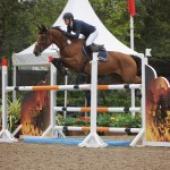 SJ Breeding: Three International wins for Irish Sport Horses at Millstreet CSI3*