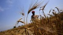 PM Modi has set target to double farmers' income by 2022: Agriculture Minister