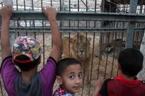 Hamas denies ownership of Gaza City amusement park