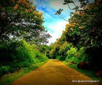 Ooty of Andhra Pradesh: Horsley Hills