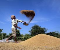 Govt to spend Rs 50,000 cr to raise farm output