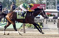 Palace Malice wins Belmont Stakes over Oxbow, Orb