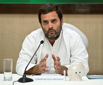 Will he, won't he? CWG wants 'reluctant' Rahul Gandhi to take over Congress's reigns