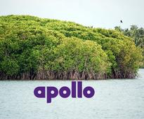 Apollo Tyres ties up with Wildlife Trust of India for the noble cause of mangrove conservation