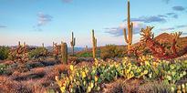 Preliminary Agenda released for 60th HPC User Forum in Tucson, AZ
