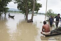 India floods kill more than 200 animals, including rare rhinos