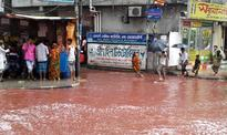 Rivers of Blood Flow in Dhaka Streets after Muslim Holy Day Animal Sacrifices