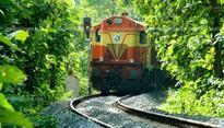 Nilambur-Nanjangud rail: State seeks consensus with K'taka