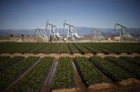 U.S. crude stockpiles fall as imports drop, refinery rates rise: EIA