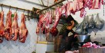 Beef Ban Volunteers: Bombay HC Struck down self-styled Gau Rakshaks