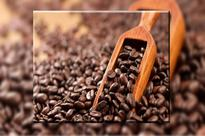 Indonesian coffee trade to focus on niche markets as exports slow