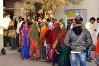 80.12% turnout in panchayat polls