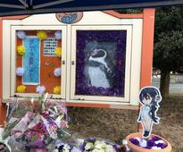 Sachcha pyaar: Penguin who fell in love with a cardboard cutout dies at 21