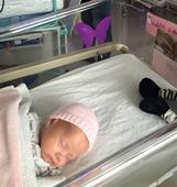 Why the hidden meaning to this purple butterfly is so important to NICU parents