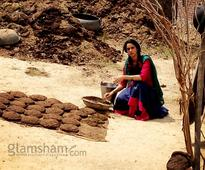 Mallika Sherawat makes cow dung cakes