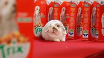 This bunny beat out 7,500 other silly rabbits to become Trix's new mascot