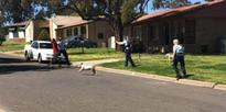 Police shoot man in buttock in New South Wales