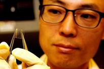 NUS researchers developed the world's first bendable MRAM device