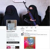 When Bana Al-Abed Blocked @21WIRE on Twitter