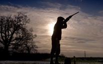 Don't shoot - woodcock numbers in 'real trouble', say conservationists