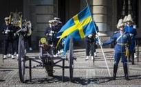 Swedish royal guard under attack from aggressive terns