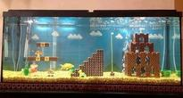 Mario Fish Tank Makes Us Want Pet Fish