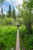 America's Most Revisited National Park: Isle Royale In Michigan
