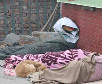 Intense cold, dense fog prevails in north India, 10 killed