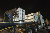 Rescued lions roar into South Africa after fli... Workers transport cages with African lions, that were born in captivity and ...