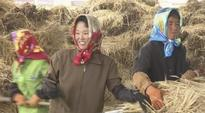 North Korea: Good weather, new farmer incentives seen boosting harvest