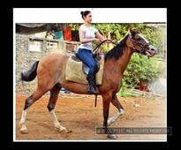 This is how Tamannaah trains herself for 'Baahubali: The Beginning'