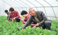 Making poverty history in one of China's poorest provinces