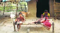 Implementing multiple schemes to address hunger: Government