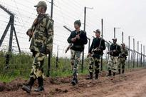 BSF shoots down intruder in Pathankot, commandos deployed