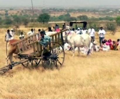 Maha farmers `reclaim' land acquired by Nirav Modi's firm