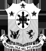 Sarmiento to LGUs: Adopt protocols for protecting children victims of armed conflict