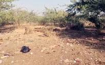 Aravallis: From green lungs to graveyard