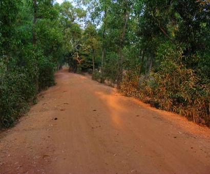 A treasure trove called Shantiniketan