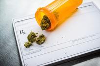 Seven States Pass Some Form of Marijuana Legalization