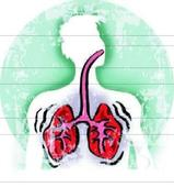 Govt hosps ready with new drug to fight resistant TB
