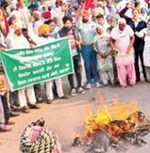 Government's effigy burnt against transfer of Barnala SMO