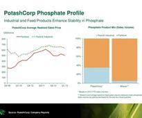 Potash Corp./Saskatchewan (USA) (POT): Is This the Best Stock in the Market Today?