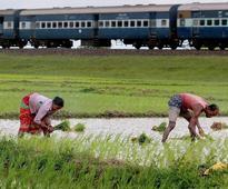 States slow in spending funds allocated under Krishi Vikas Yojana