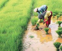 Does good monsoon mean big consumption boost?
